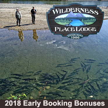 Wilderness Place Lodge - 2017 Early Booking Deals