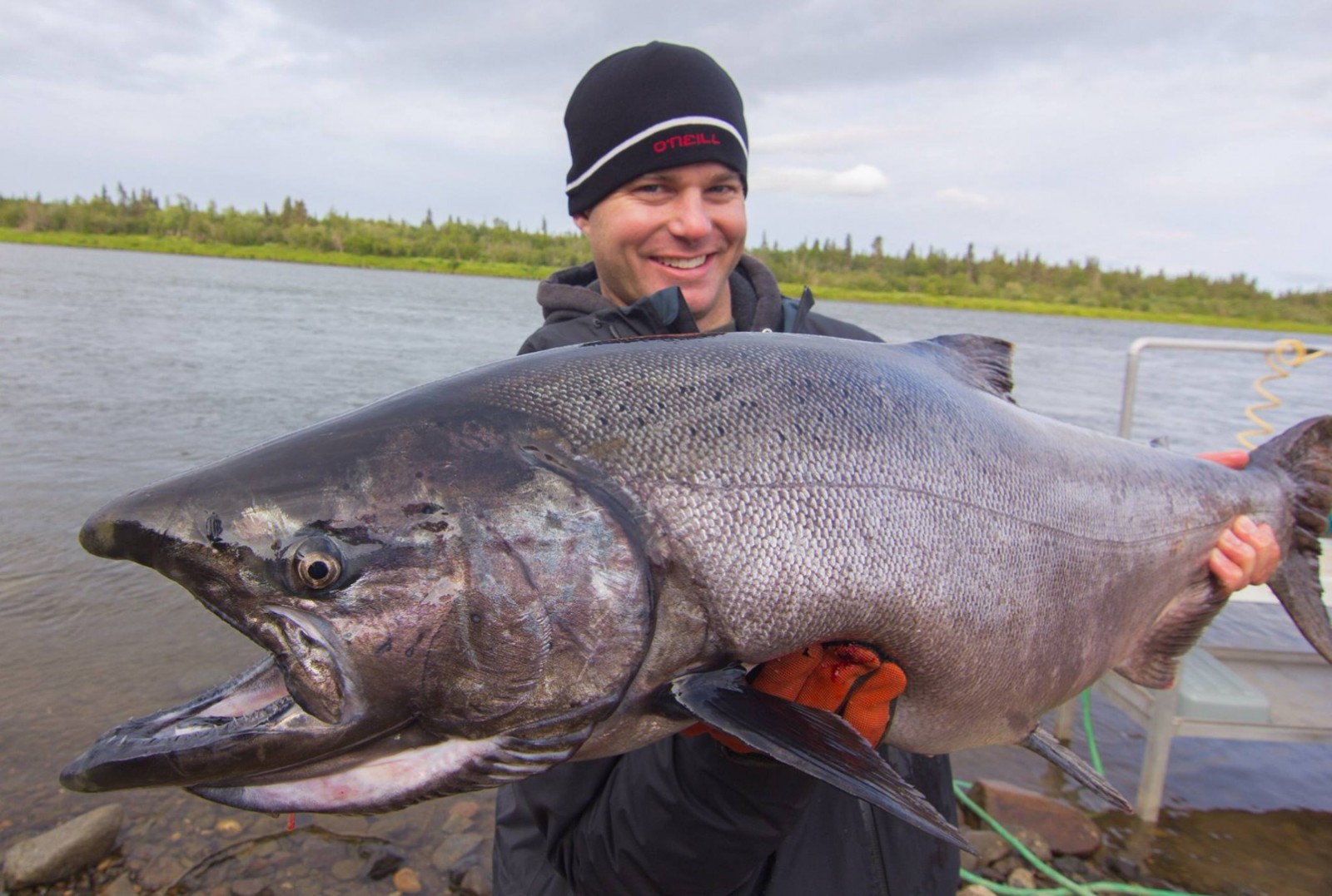 Alaska king salmon adventures southwest alaska my for Alaskan salmon fishing