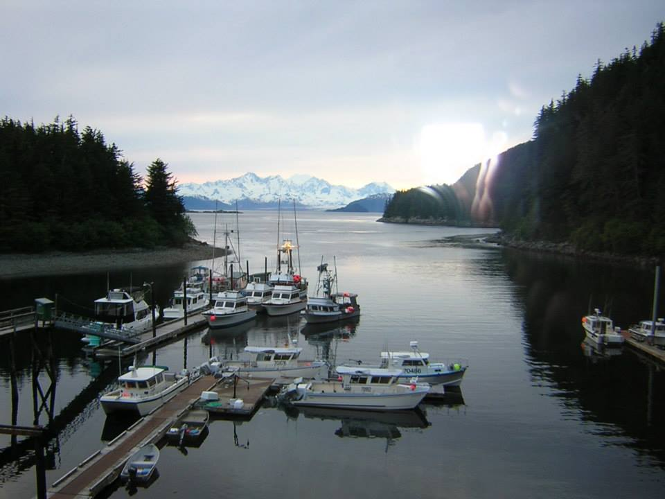 elfin cove black singles Alaska's election district information:  along black bear creek to union bay,  coffman cove, craig, edna bay, elfin cove, gustavus, haines, .