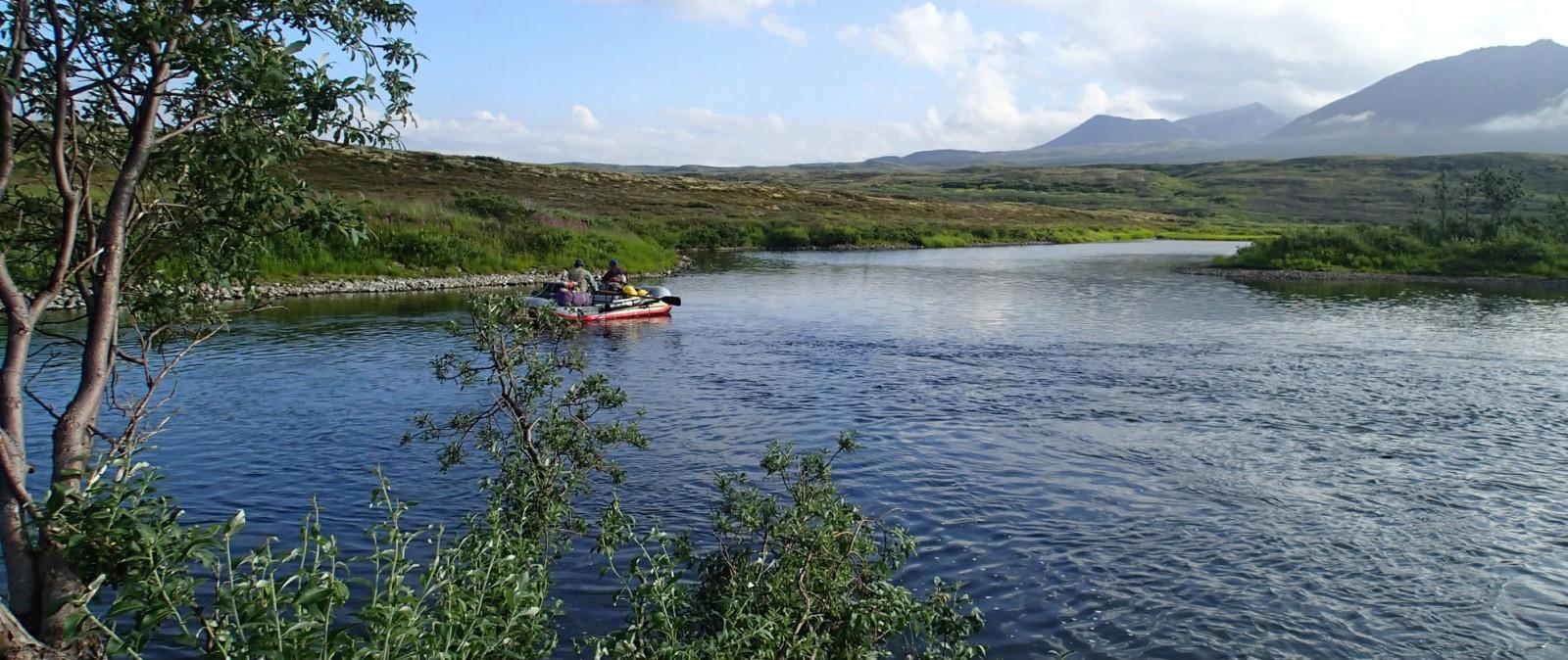 Fishing trips sheefish my alaskan fishing trip for Alaska fishing trip