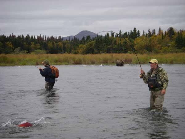 Naknek river camp southwest alaska my alaskan fishing trip for Alaska fishing camps