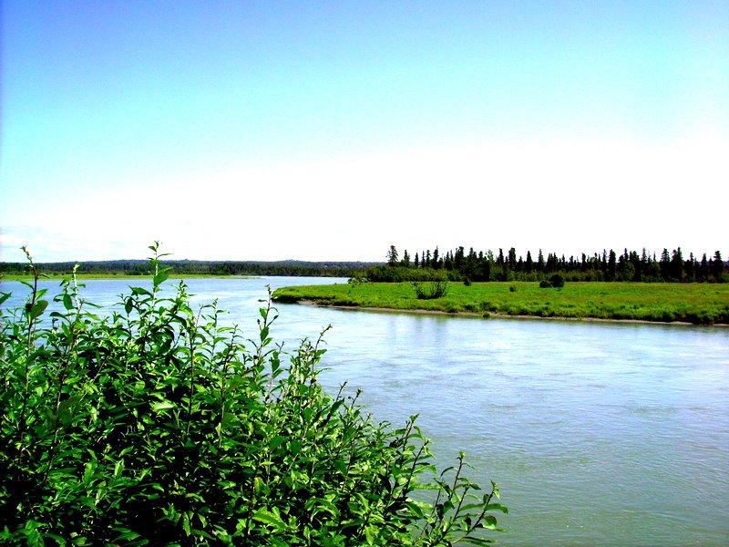 Riddle 39 s fishing lodge south central alaska my alaskan for Kenai river fishing lodges