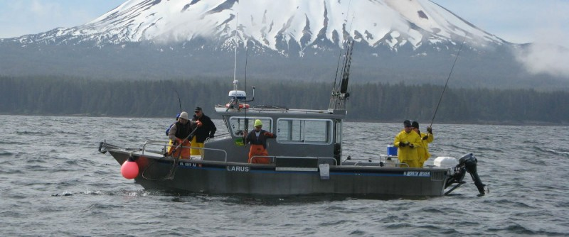 Fishing trips pink salmon my alaskan fishing trip for Alaska fishing boats