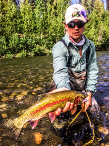 A beautiful August rainbow trout on the fly!