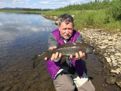 Trophy Arctic Grayling
