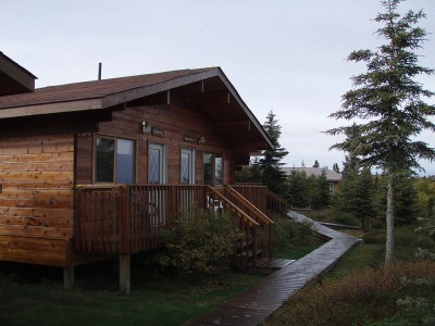 Guest Cabin