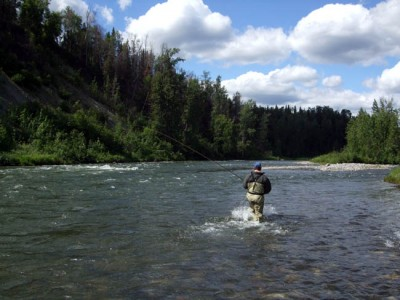 Fly Fishing near Wilderness Place Lodge