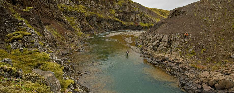 best places in the world for a fly fishing vacation | my alaskan, Fly Fishing Bait