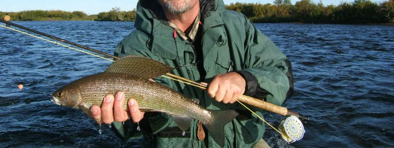 Find your dream alaska fishing trip my alaskan fishing trip for Best alaska fishing packages