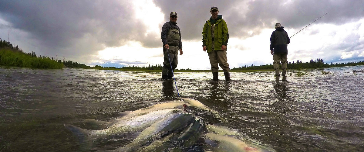 Ask the Pro's: Fly Fishing Trip for King Salmon