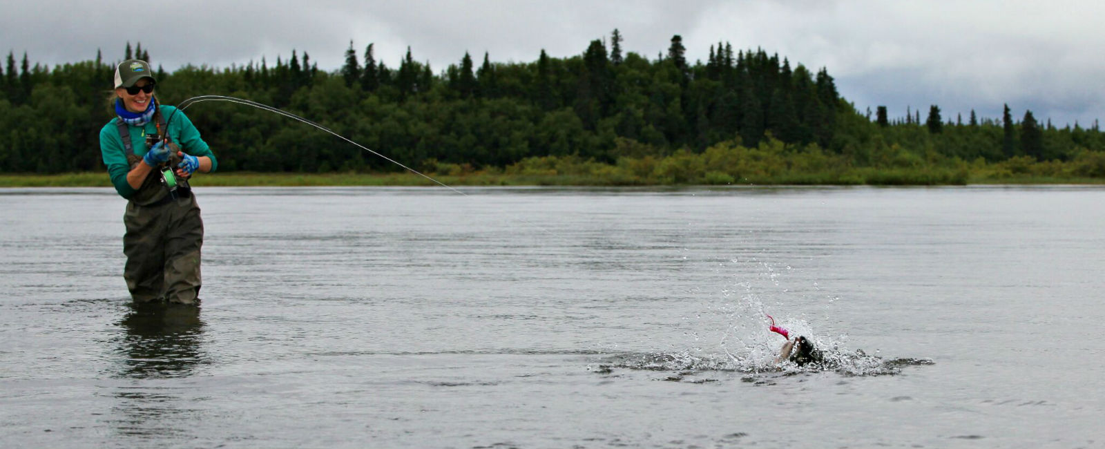 Rebekka Redd fighting a Silver Salmon caught in the Bristol Bay Watershed with Angler's Alibi Lodge - Alagnak River, Alaska