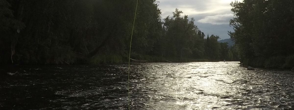Fly Fishing the Russian River