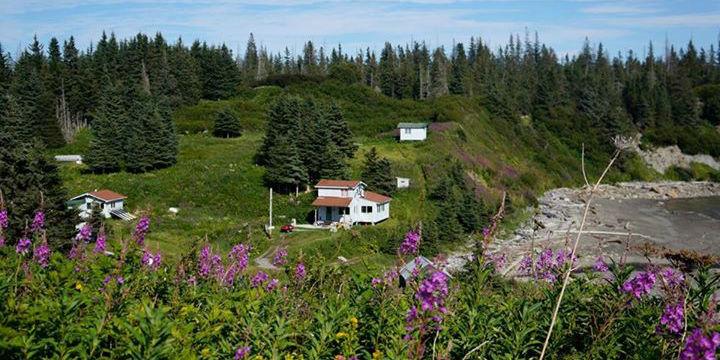 Alaska Island Retreat
