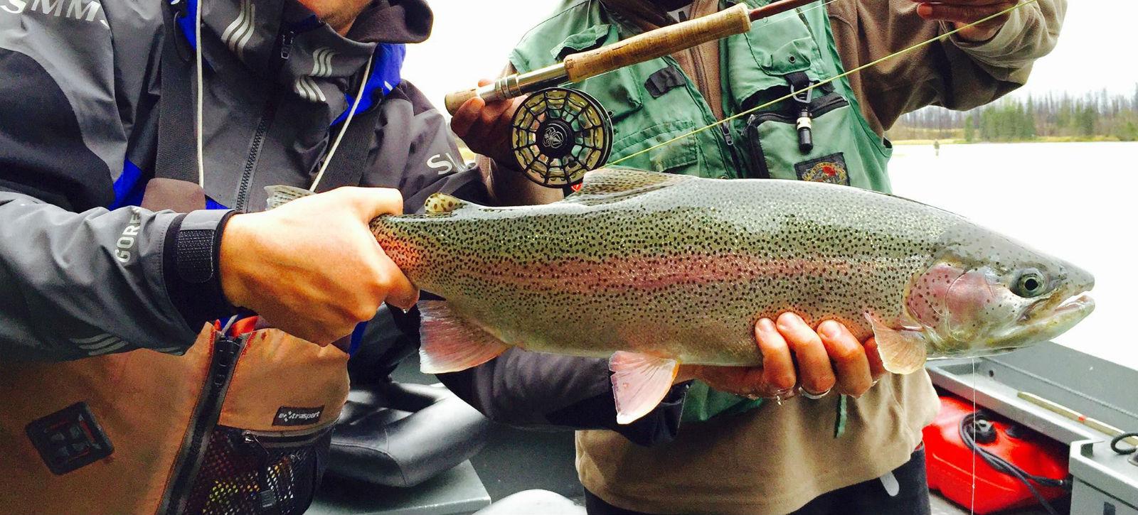 Alaska Trout Guides