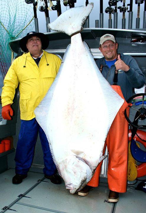 Alaskan Anglers Inn Southeast Alaska My Alaskan Fishing Trip