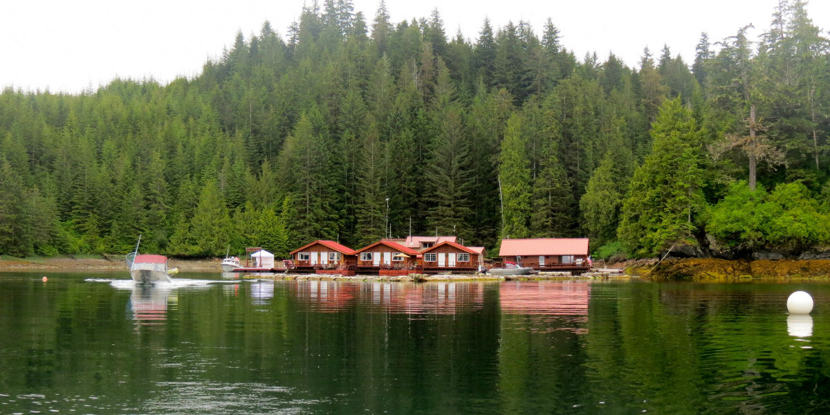 Alaska's Sea Otter Sound Lodge