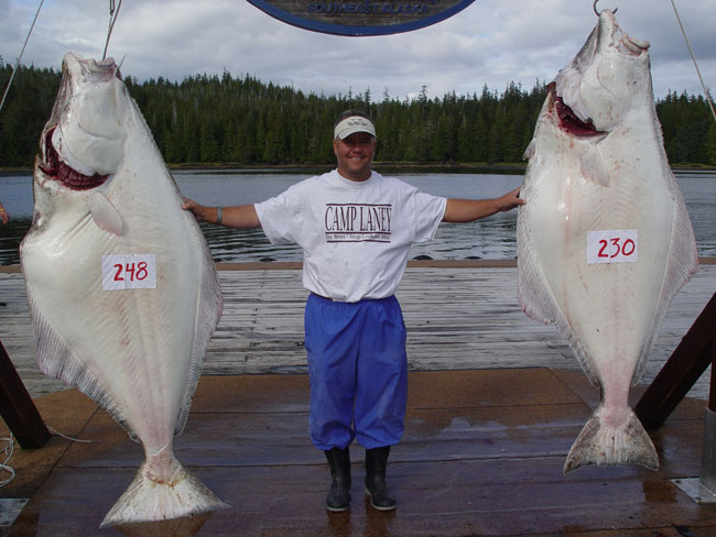 El Capitan Lodge Southeast Alaska My Alaskan Fishing Trip