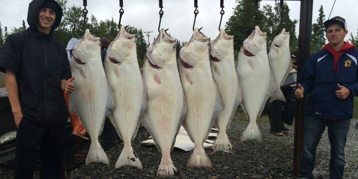 Gotta Fish Charters