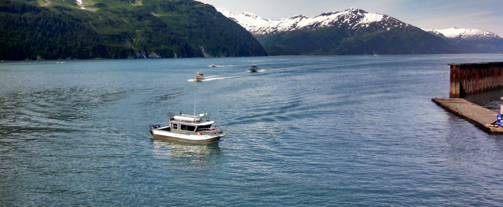 Saltwater Excursions Fishing Charters