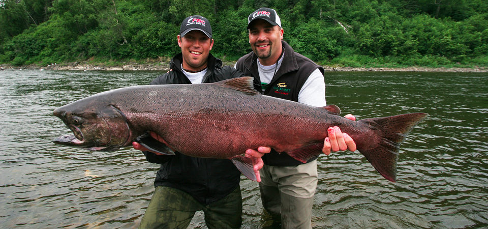 Talstar Lodge - King Salmon