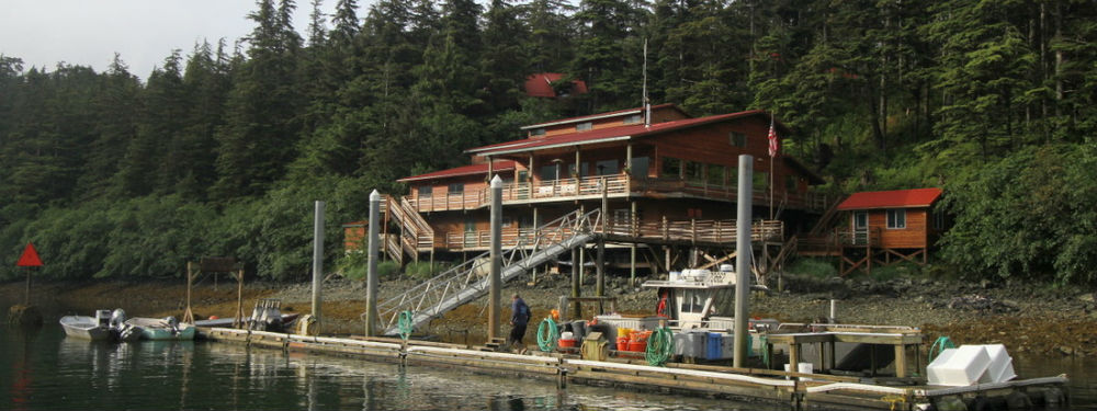 tanaku lodge southeast alaska my alaskan fishing trip